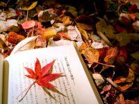 Những cuốn sách nên đọc để thành công vời vợi