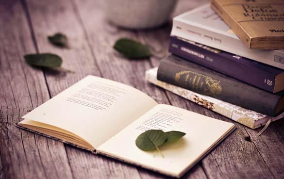Những cuốn sách hay nhất mọi thời đại được nhiều người thích
